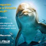 Afiche_Preguntas Frecuentes-150x150