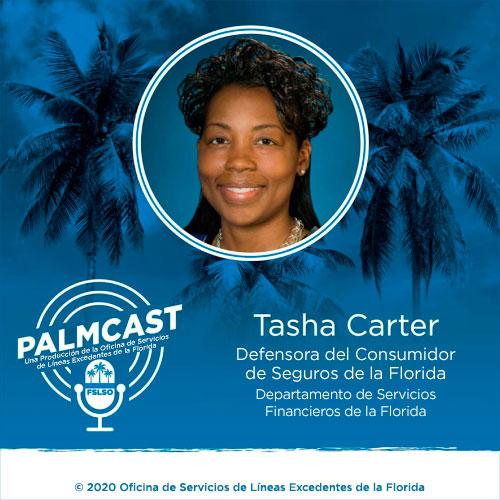 YourFLVoice - Escuchar Ahora: Conversemos sobre la Preparación para Huracanes en PalmCast