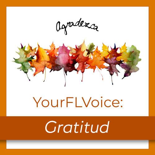 Edición de Noviembre deYourFLVoice: Gratitud