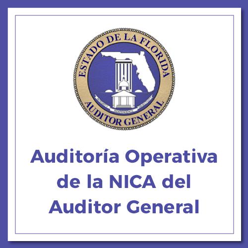 PDF: Auditoría Operativa de la NICA del Auditor General